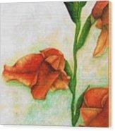 Gladiolas Wood Print