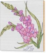 Gladiolus Pink Wood Print