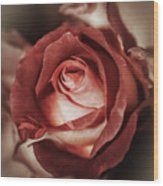 Glamorous Rose Wood Print