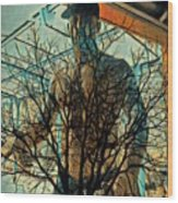 Glass And Branches  Wood Print