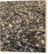 Glass Beach Wood Print