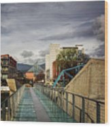 Glass Bridge To The Aquarium Wood Print