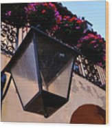 Glass Light Housing With Red Flower Architecture In Saint August Wood Print