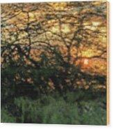 Glass Sunset Hawaii Wood Print