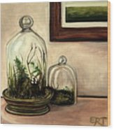 Glass Terrariums Wood Print