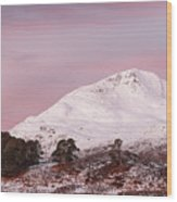 Glen Affric Sunrise Wood Print