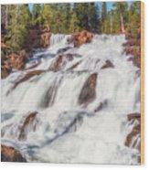 Glen Alpine Falls In Early Morning Light Wood Print