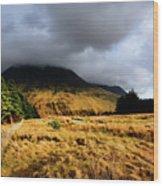 Glen Brittle Wood Print