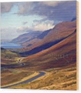Glen Docharty And Loch Maree Wood Print