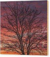Glen Iris Sunrise Wood Print
