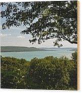 Glen Lake Overlook Wood Print