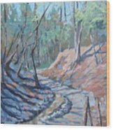 Glen Stewart Ravine Wood Print