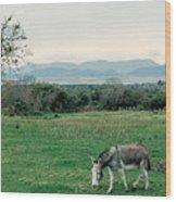 Glenbeigh Ireland Wood Print