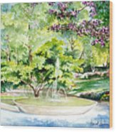 Glencairn Fountain Wood Print