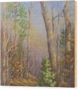 Glenmoor Woods, Sunset Wood Print