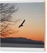 Glide Wood Print
