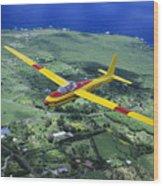 Gliding Over Hana Wood Print