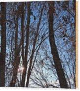 Glimmer Wood Print