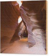 Glimpse Of Grandeur Wood Print