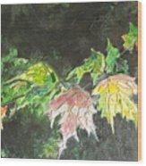 Glistening Fall Wood Print