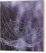 Glistening Web Wood Print