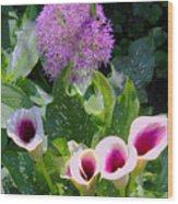 Globe Thistle And Calla Lilies Wood Print by Corey Ford