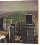 Gloomy Central Park Wood Print