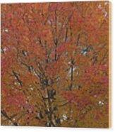 Glorious Autumn Wood Print