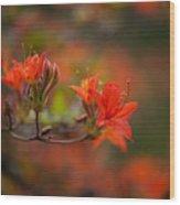 Glorious Blooms Wood Print