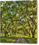 Glorious Entrance Tomotley Plantation South Carolina  Wood Print