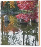 Glorious Fall Colors Reflection With Border Wood Print