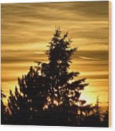 Glorious Guildford Sunset Wood Print