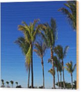 Glorious Palms Wood Print