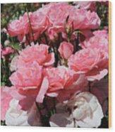 Glorious Pink Roses Wood Print