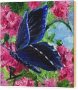 Glory Aceo Wood Print