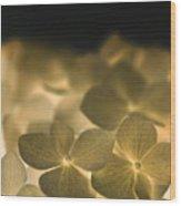 Glow Blossoms Wood Print