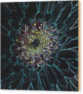 Glow Edge Flower Wood Print