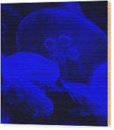 Glow Fish Wood Print