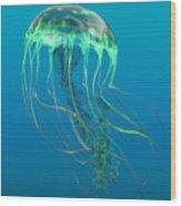 Glow Green Jellyfish Wood Print