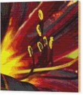 Glowing Flower Power Wood Print