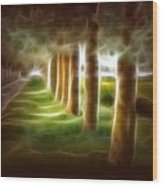 Glowing Forest Wood Print