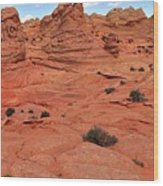 Glowing Sand In The Buttes Wood Print