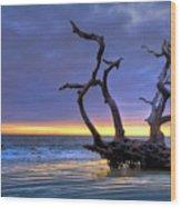 Glowing Sands At Driftwood Beach Wood Print