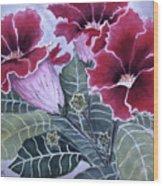 Gloxinias Wood Print