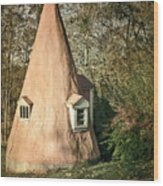 Gnome House Wood Print by Susan Isakson