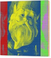 Gnomes In Crazy Color Wood Print