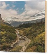 Gnp-scenic View Wood Print