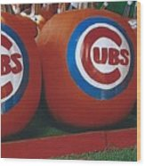 Go Cubs Chicago Celebrates Wood Print