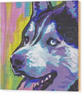 Go Husky Wood Print