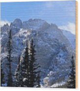 Go Tell It On The Mountain Wood Print